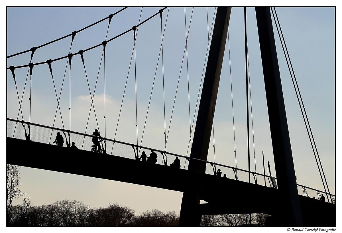 Fietsers op Dafne Schippersbrug te Utrecht